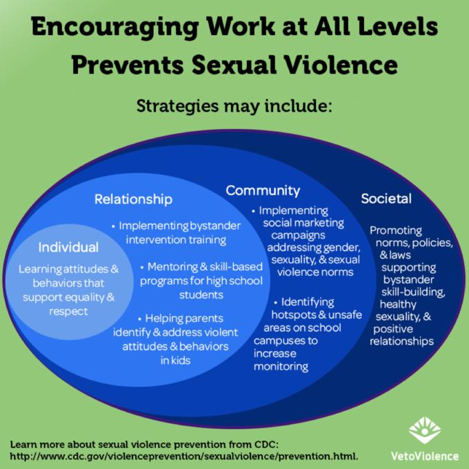 Sexual Violence_SEM.png