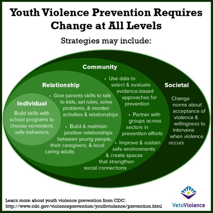 Youth Violence_SEM.png